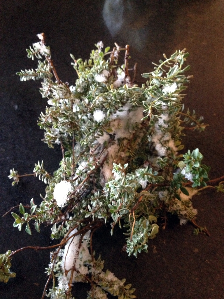 Snowy Thyme for Chicken Soup