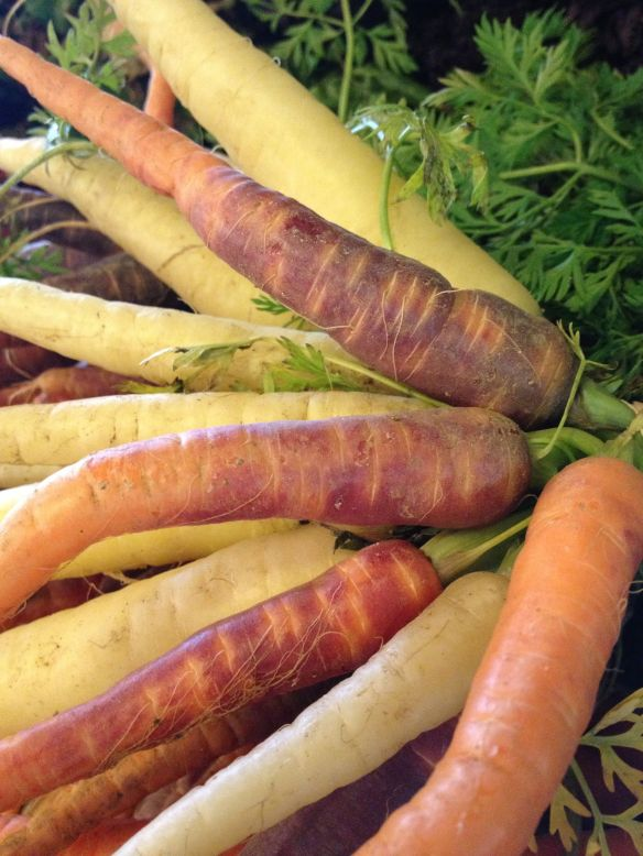Beautiful heirloom carrots in jewel tones from Stillman Farms