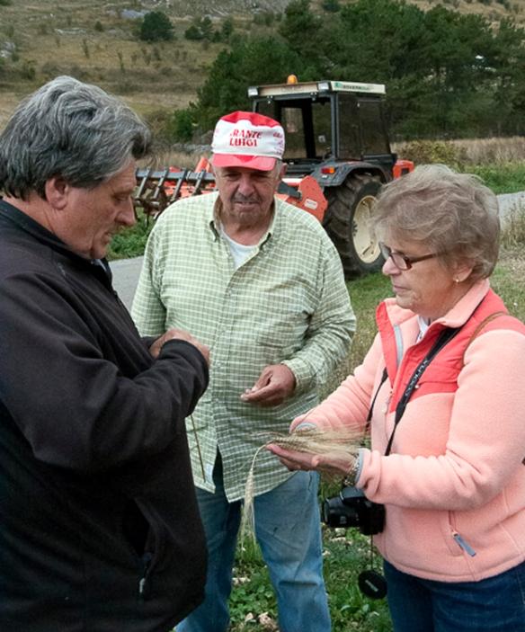 Farmers taking crops